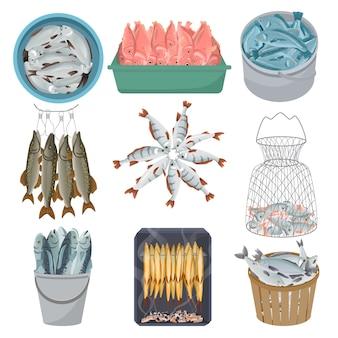 Świeża ryba wektorowy surowy dennego łososia pstrąg szczupak w netto owoce morza ilustracyjnym połowu rynku