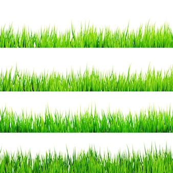 Świeża wiosna zielona trawa na białym tle