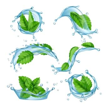 Świeża woda miętowa. płynne plamy z zielonym liściem mentolu do picia wektor realistycznej kolekcji