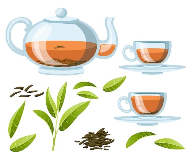 Świeże liście zielonej herbaty i sucha herbata stos. czajnik i filiżanki z przezroczystego szkła z czarną herbatą. zielona herbata do celów reklamowych i opakowaniowych. ilustracja na białym tle
