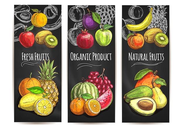 Świeże, naturalne organiczne owoce. szkic wektor gruszka, pomarańcza, awokado, jabłko, brzoskwinia, banan, kiwi