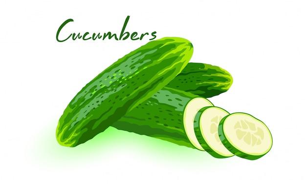 Świeże ogórki, plasterki lub korniszony w całości i pokrojone w segmenty. zielone warzywa do sałatek, marynowania. ilustracja kreskówka na białym tle menu, przepisy kulinarne, opakowania.