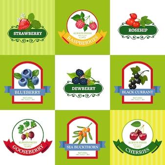 Świeże owoce etykiety płaski zestaw