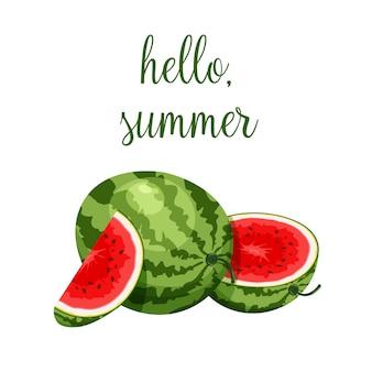 Świeży cały, pół, pokrojony plasterek i kawałek arbuza na białym tle. wegańskie jedzenie wektorowe ikony w modnym stylu cartoon. witam koncepcja lato. cartoon berry.
