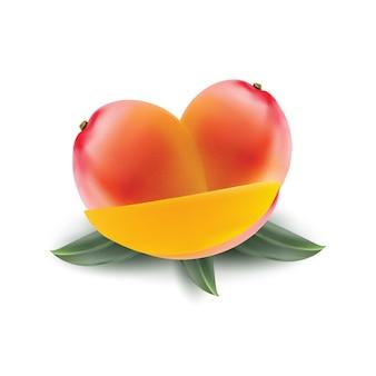 Świeży owoc mango na realistycznej ilustracji białej powierzchni