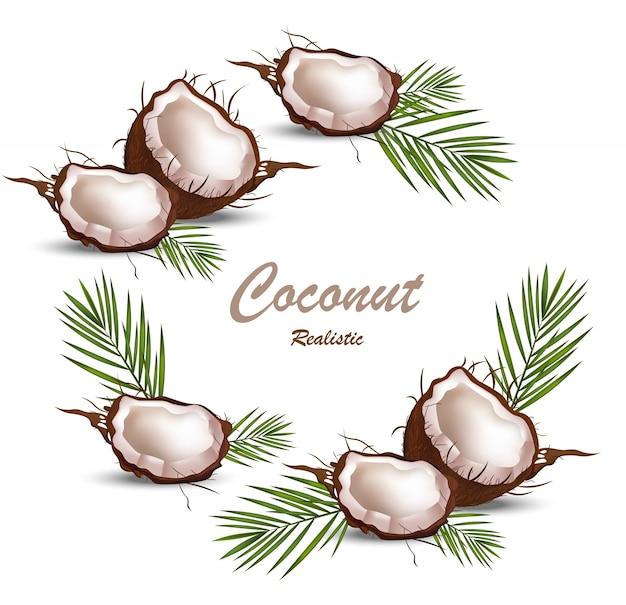 Świeży owoc zwrotnik kokosowy realistyczny