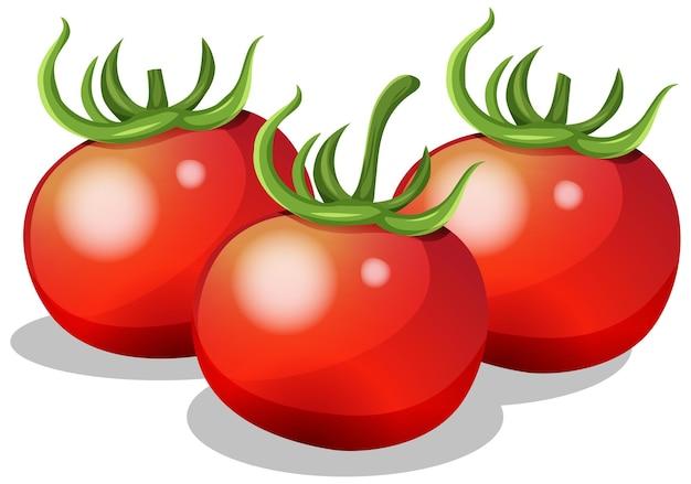 Świeży pomidor