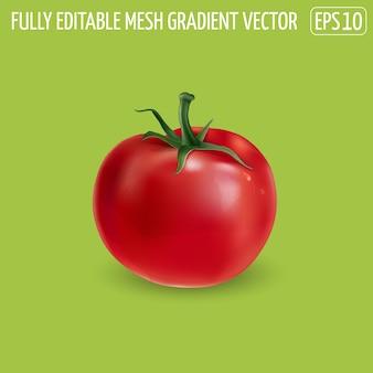 Świeżych czerwonych pomidorów na zielono