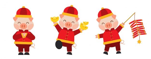 Świnia na chiński zestaw nowego roku