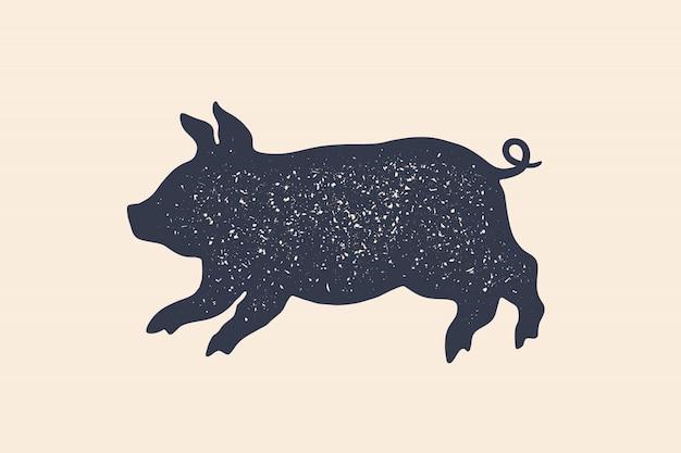 Świnia, świnka. koncepcja zwierząt gospodarskich