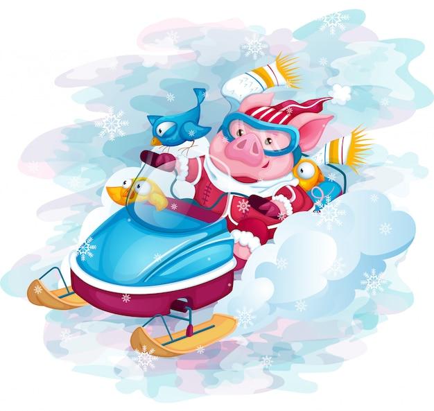 Świnka i ptaki jeżdżą szybkim skuterem śnieżnym.