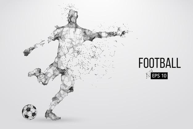 Sylwetka piłkarza