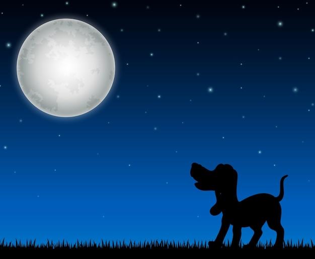 Sylwetka psia pozycja na nocy tle
