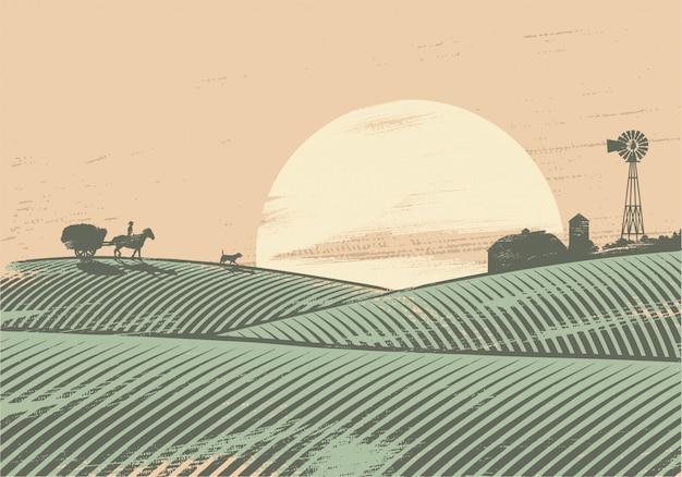 Sylwetka rolnika w polu o zachodzie słońca