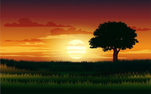 Sylwetka samotnego drzewa o zachodzie słońca