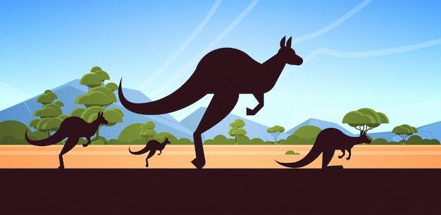 Sylwetka skaczących dzikich zwierząt kangur australijski krajobraz natura australii przyrody fauna koncepcja poziome