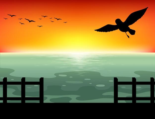 Sylwetka zachód słońca