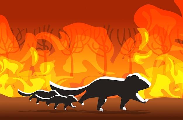 Sylwetki diabłów tasmańskich uciekających przed pożarami lasów w australii zwierzęta giną w pożarze buszu pożary płonących drzew koncepcja klęski żywiołowej intensywne pomarańczowe płomienie poziome