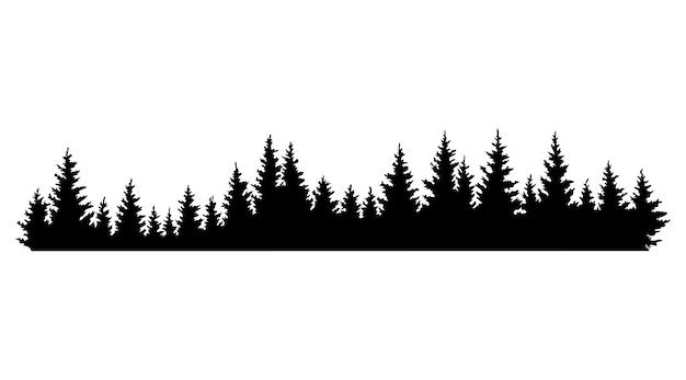 Sylwetki drzew jodłowych.