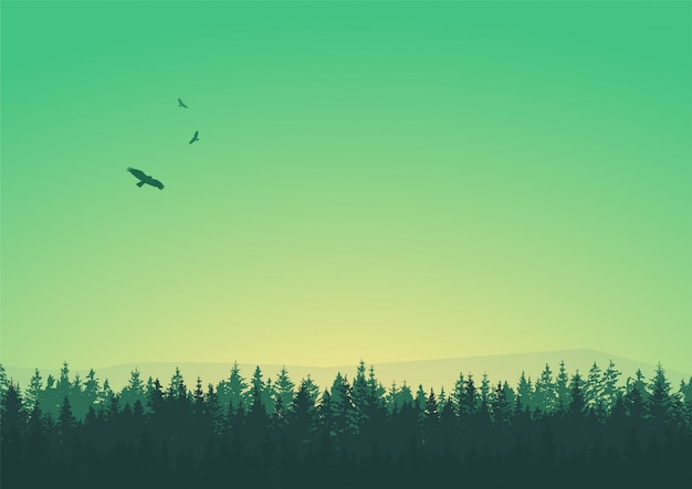 Sylwetki drzew z ptakami na niebie zielone sceny