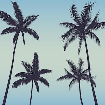 Sylwetki drzewek palmowych tło