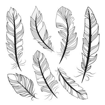 Sylwetki ilustracji wektorowych piór