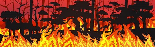 Sylwetki kangurów uciekających od pożarów lasów w australii zwierzęta giną w pożarze buszu pożar palenie drzew koncepcja klęski żywiołowej intensywne pomarańczowe płomienie poziome
