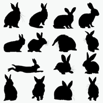 Sylwetki królików