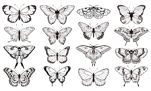 Sylwetki motyla czarny kontur motyle tatuaż graficzny wektor zestaw do projektowania kart ślubnych