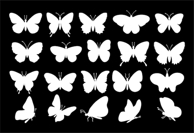 Sylwetki motyle. wiosna sylwetka motyl kolekcja biały na czarnym tle. zestaw motyli. różne rodzaje ikon motyli.