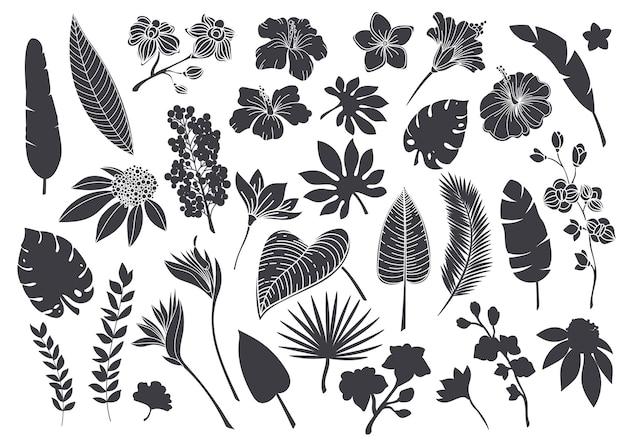Sylwetki tropikalnych liści i kwiatów. monochromatyczny glif lasu palmowego monstera paproci hawajskie liście, orchidea, hibiskus, kwiat plumeria. ilustracja wektorowa roślin tropikalnych elementów.