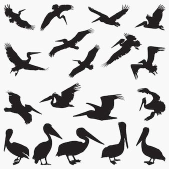 Sylwetki wektora pelikana