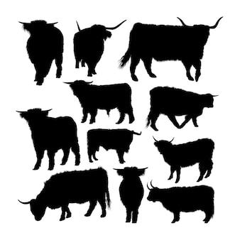 Sylwetki zwierząt krów wyżynnych