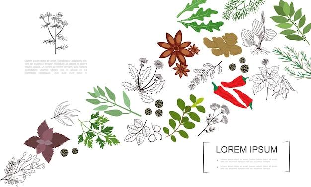 Szablon botaniczny zdrowe przyprawy