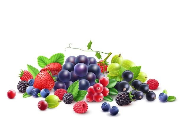 Szablon dojrzałe jagody