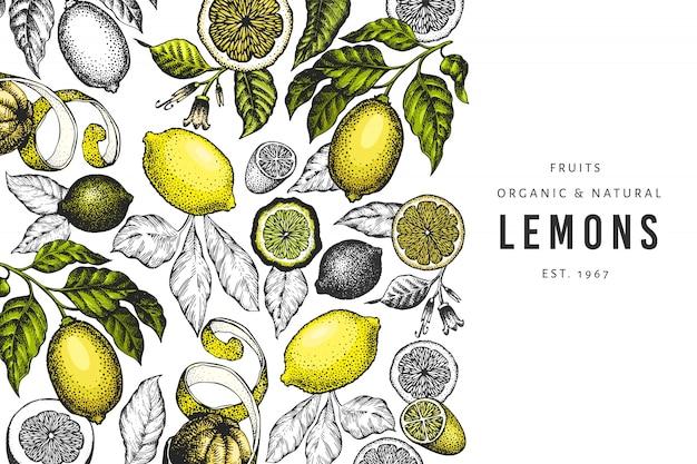 Szablon drzewa cytrynowego. ręcznie rysowane ilustracja owoców