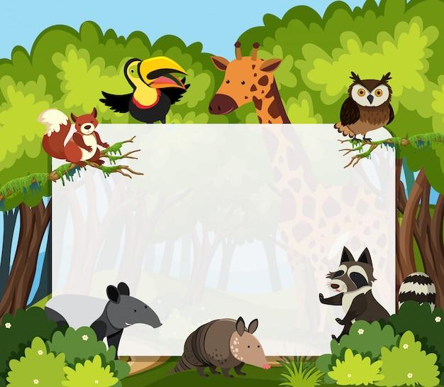 Szablon dzikich zwierząt