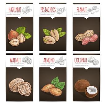 Szablon etykiety orzechy z tytułami. nasiona roślin, orzech laskowy, pistacje, orzeszki ziemne, orzech, migdał