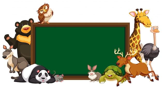 Szablon forum z dzikimi zwierzętami