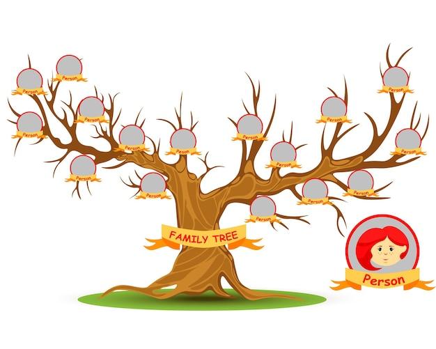 Szablon genealogii drzewa genealogicznego