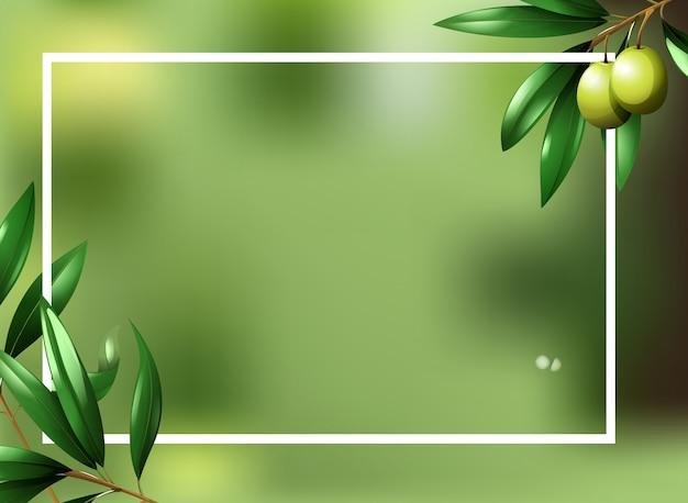 Szablon granicy z rośliną oliwną
