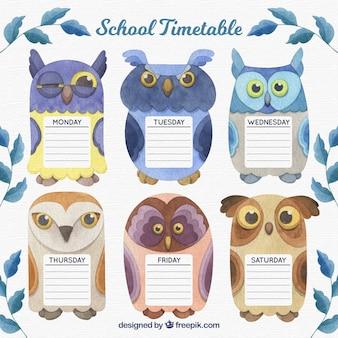 Szablon harmonogramu szkoły z akwarela sowy