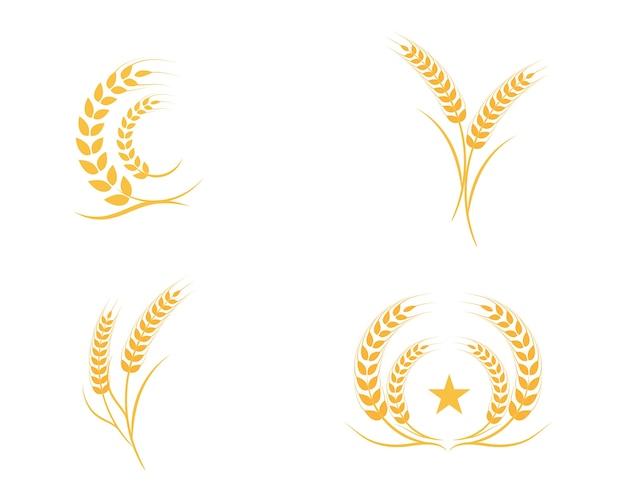 Szablon logo pszenicy