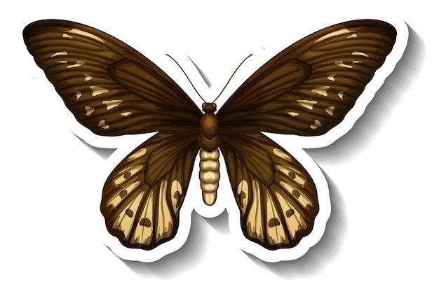 Szablon naklejki z motylem lub ćmą na białym tle