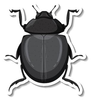 Szablon naklejki z widokiem z góry izolowanego chrząszcza