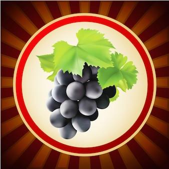 Szablon owoców winogronowych