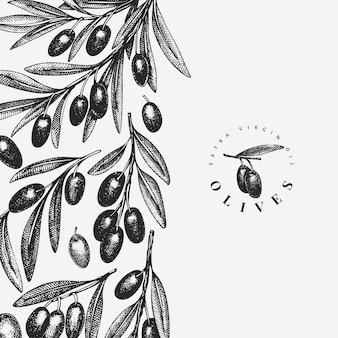 Szablon projektu gałązki oliwnej. grawerowana roślina śródziemnomorska w stylu. retro obraz botaniczny.