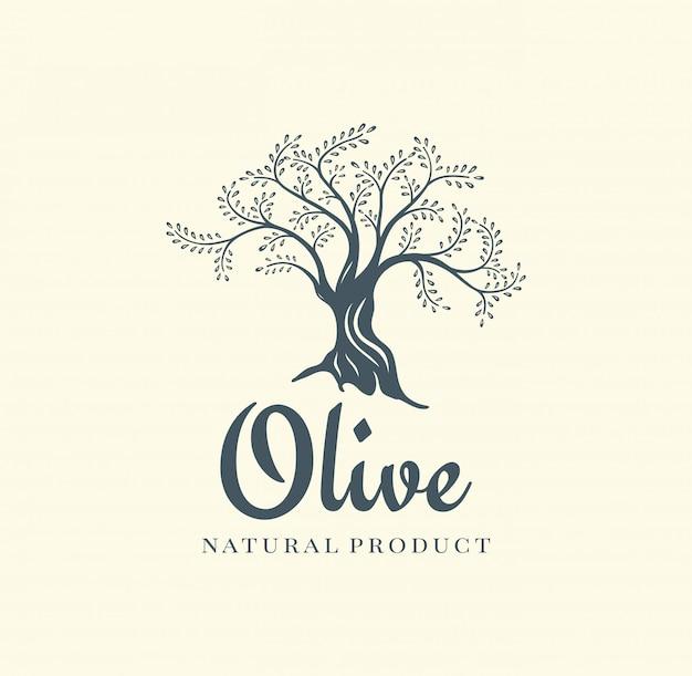 Szablon projektu logo wektor drzewo oliwne na olej