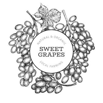 Szablon projektu winogron. ręcznie rysowane wektor winogron jagodowych ilustracji. grawerowana rama botaniczna w stylu retro