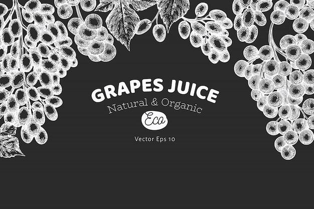 Szablon projektu winogron. wręcza patroszoną gronową jagodową ilustrację na kredowej desce. grawerowany styl retro transparent botaniczny.